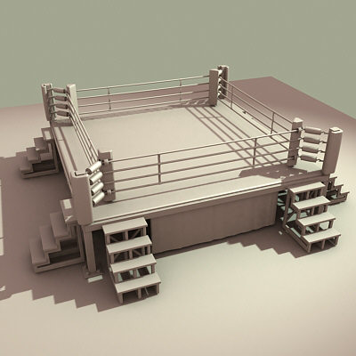 Boxing Ring Roy DiTosti �
